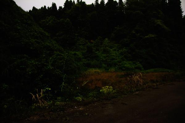 Sakamoto520minitsweb
