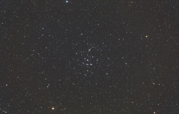 M44x10decrawself_flat